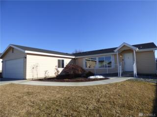 3 Laguna Place W, Omak, WA 98841 (#1091589) :: Ben Kinney Real Estate Team