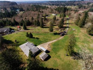 166 Eastridge Dr, Centralia, WA 98531 (#1091768) :: Ben Kinney Real Estate Team