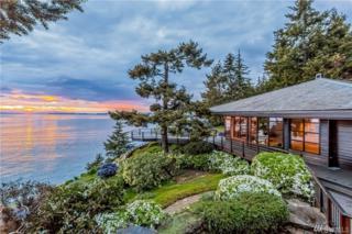 723 Carefree Wy, San Juan Island, WA 98250 (#1092570) :: Ben Kinney Real Estate Team