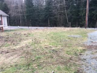 0-xxxx Cain Lake Rd, Sedro Woolley, WA 98284 (#1093093) :: Ben Kinney Real Estate Team