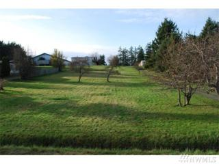 0-xx Myrtle Ave, Freeland, WA 98249 (#1093912) :: Ben Kinney Real Estate Team