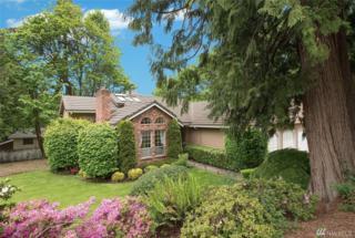 10256 Se 7th St, Bellevue, WA 98004 (#1121011) :: Alchemy Real Estate