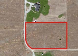 777 Horizon Drive, Tonasket, WA 98855 (#359963) :: Ben Kinney Real Estate Team