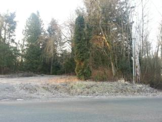 155 Tremont Ave, Bellingham, WA 98226 (#467781) :: Ben Kinney Real Estate Team