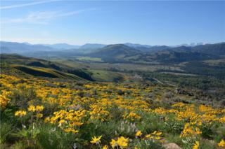 2-XX Gunn Ranch Rd, Winthrop, WA 98862 (#502506) :: Ben Kinney Real Estate Team