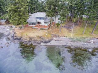 25 Pearl Island Wy, San Juan Island, WA 98250 (#642799) :: Ben Kinney Real Estate Team