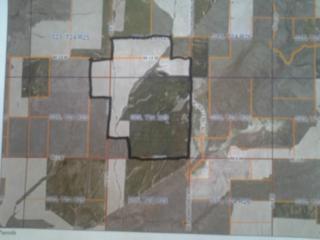 400 F Rd SE, Ephrata, WA 98851 (#660595) :: Ben Kinney Real Estate Team