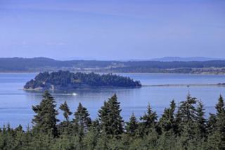 1048 Malvern Hills Dr, Camano Island, WA 98282 (#677496) :: Ben Kinney Real Estate Team