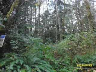 12784 Eastbrook Dr SW, Port Orchard, WA 98465 (#710782) :: Ben Kinney Real Estate Team