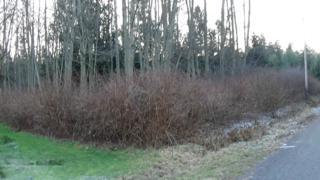 0 Twin Spits Rd NE, Hansville, WA 98340 (#727089) :: Ben Kinney Real Estate Team