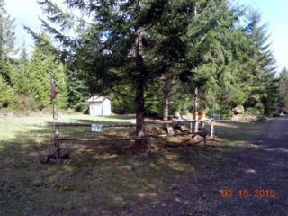 0 N Triton Heights Rd, Lilliwaup, WA 98555 (#758536) :: Ben Kinney Real Estate Team
