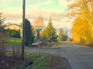 26525 Edgewater Blvd NW, Poulsbo, WA 98370 (#811201) :: Ben Kinney Real Estate Team