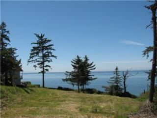 144-x West Beach Rd, Oak Harbor, WA 98277 (#843835) :: Ben Kinney Real Estate Team