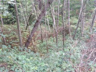 105 Solo View Dr, Longview, WA 98632 (#857159) :: Ben Kinney Real Estate Team