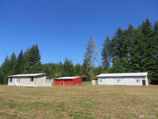 670 Wildwood Rd, Curtis, WA 98538 (#876371) :: Ben Kinney Real Estate Team