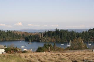 9999 Marianne Meadows, Port Ludlow, WA 98365 (#889048) :: Ben Kinney Real Estate Team