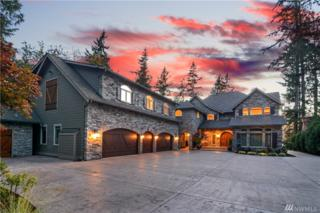 23689 Aldo Rd NW, Poulsbo, WA 98370 (#909846) :: Ben Kinney Real Estate Team