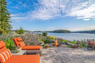 0 Little Henry, Henry Island, WA 98250 (#936944) :: Ben Kinney Real Estate Team