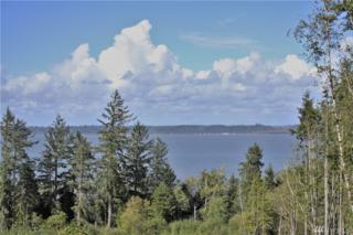 0-XXX State Route 105, Aberdeen, WA 98520 (#940276) :: Ben Kinney Real Estate Team