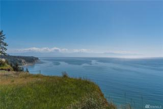 2143 West Beach Rd, Oak Harbor, WA 98277 (#942485) :: Ben Kinney Real Estate Team