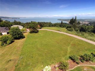 0-8XX Cambell Dr, Camano Island, WA 98282 (#956652) :: Ben Kinney Real Estate Team