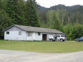 5490 Us Hwy 101, Neilton, WA 98566 (#964311) :: Ben Kinney Real Estate Team