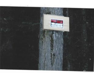 34293 S Nason Rd, Leavenworth, WA 98826 (#967633) :: Ben Kinney Real Estate Team