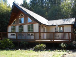 134 Red Cedar Lane, Packwood, WA 98361 (#974267) :: Ben Kinney Real Estate Team