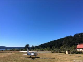 364 Airport Perimeter Wy, Decatur Island, WA 98221 (#1002589) :: Ben Kinney Real Estate Team