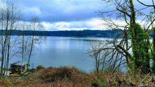 11623 NW 10th Ave NW, Gig Harbor, WA 98332 (#1050321) :: Ben Kinney Real Estate Team