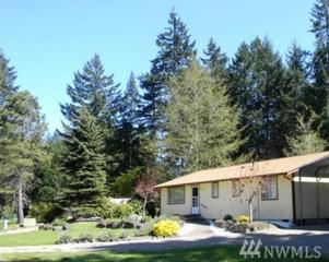 971 NE Larson Blvd, Belfair, WA 98528 (#1050373) :: Ben Kinney Real Estate Team