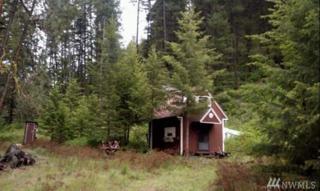 1640 N Jostin Rd N, Malo, WA 99150 (#1061380) :: Ben Kinney Real Estate Team