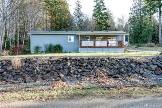 140 E Orchard Lane, Shelton, WA 98584 (#1074602) :: Ben Kinney Real Estate Team