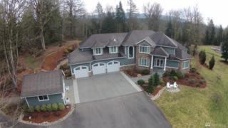 26531 SE 354th Place, Black Diamond, WA 98010 (#1076224) :: Ben Kinney Real Estate Team