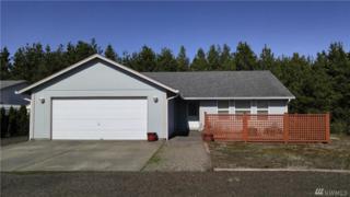 1210 Pebble Beach Ct, Westport, WA 98595 (#1089330) :: Ben Kinney Real Estate Team