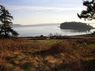 1146 Viewpoint Dr, Oak Harbor, WA 98277 (#621524) :: Ben Kinney Real Estate Team