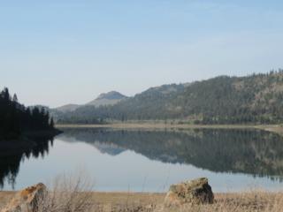20-(Lot 20) Lakefront Dr, Oroville, WA 98844 (#775445) :: Ben Kinney Real Estate Team