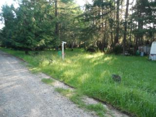 903 E Madrona Blvd, Lakebay, WA 98349 (#779256) :: Ben Kinney Real Estate Team