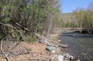 141 Twisp River Rd, Twisp, WA 98856 (#784213) :: Ben Kinney Real Estate Team