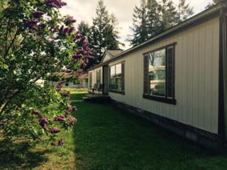 25 Old Anderson Lake Rd, Chimacum, WA 98325 (#786302) :: Ben Kinney Real Estate Team