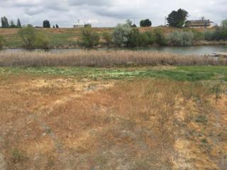 2831 Wild Goose Rd NE, Moses Lake, WA 98837 (#789680) :: Ben Kinney Real Estate Team