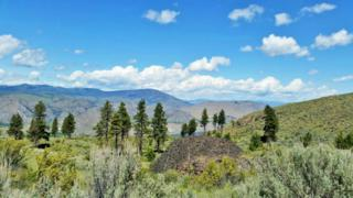 0 Bigelow Springs Rd, Orondo, WA 98843 (#790359) :: Ben Kinney Real Estate Team