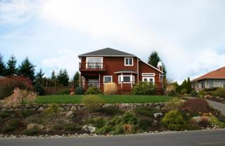 172 Glacier Peak Dr, Camano Island, WA 98282 (#813107) :: Ben Kinney Real Estate Team