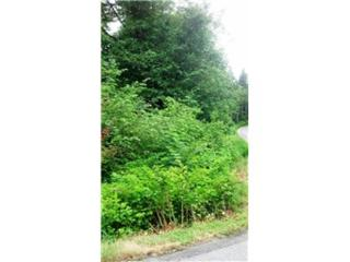 15-lot 161st Ave SE, Snohomish, WA 98290 (#827638) :: Ben Kinney Real Estate Team