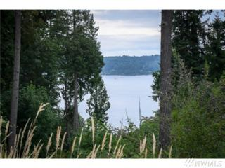 15603 14th Ave NW, Gig Harbor, WA 98332 (#865695) :: Ben Kinney Real Estate Team