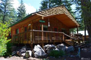 3 Moate Rd, Mazama, WA 98833 (#920897) :: Ben Kinney Real Estate Team