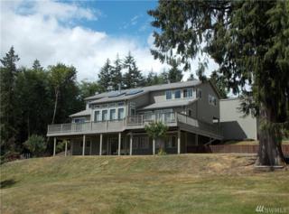 3635 Tall Cedar Lane, Centralia, WA 98531 (#953860) :: Ben Kinney Real Estate Team