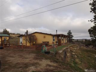 223-R Cameron Lake Loop, Okanogan, WA 98840 (#959924) :: Ben Kinney Real Estate Team