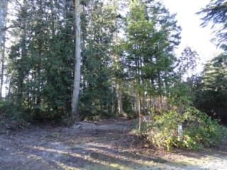 0-Lot 29 Madrona Wy, Sequim, WA 98382 (#964471) :: Ben Kinney Real Estate Team