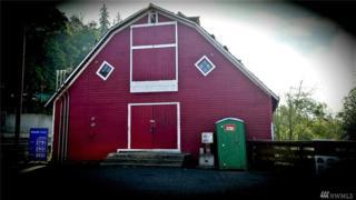 9215 Carnation- Duvall Rd NE, Carnation, WA 98014 (#976425) :: Ben Kinney Real Estate Team